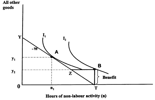 Figure 1: The effect of a 100 per cent withdrawal rate on hours of employment