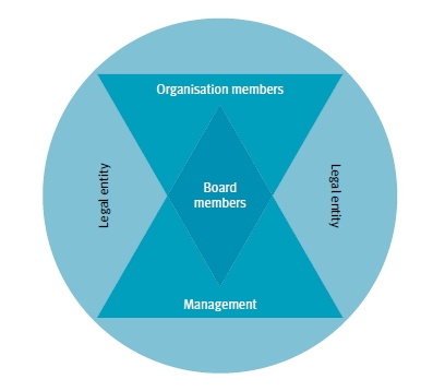 Diagram 1: Conceptual Representation of the Key Components of an Organisation