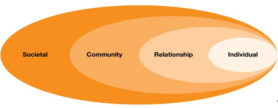 Figure 1: The ecological model for understanding violence. Source: World Health Organisation. World report on violence and health. WHO: Geneva, 2002.