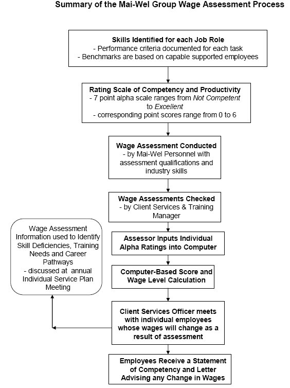 Analysis Of Wage Assessment Tools Used By Business